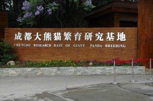 Chengdu Panda Base