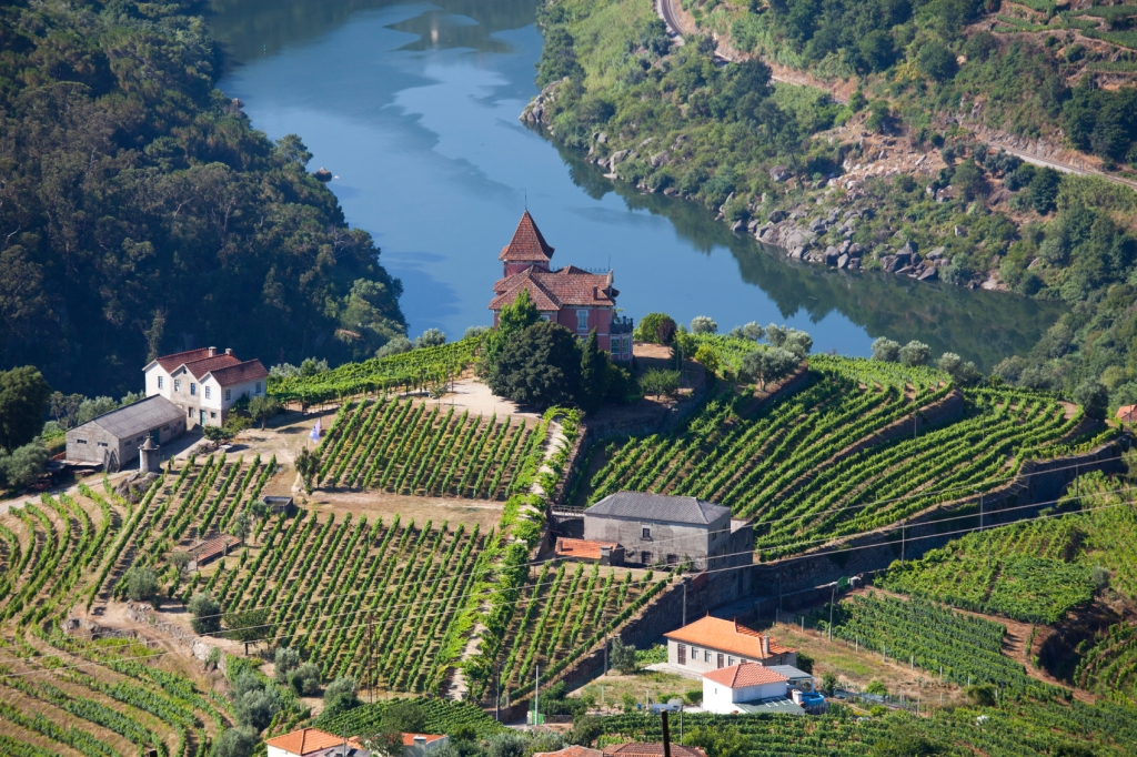 Landscape in Douro Valley