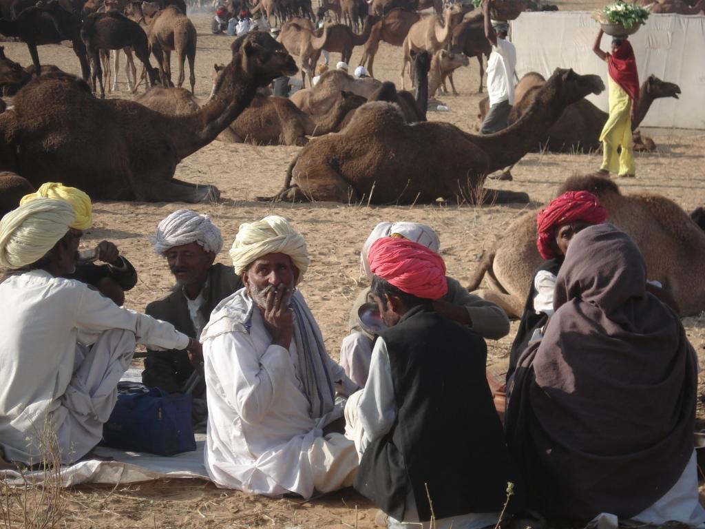 Puskar Camel Fair