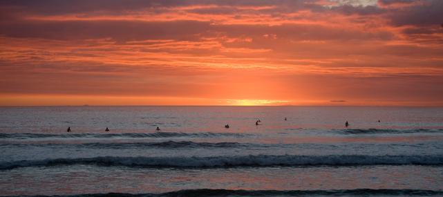 Harmony Hotel surfers